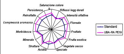 pecorino_analisi-sensoriale