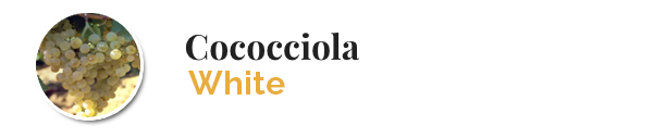 varietacococciola_en_ok
